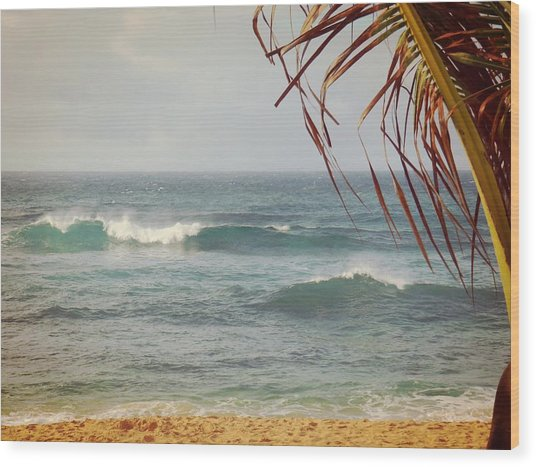 Ocean Breeze  Wood Print by JAMART Photography