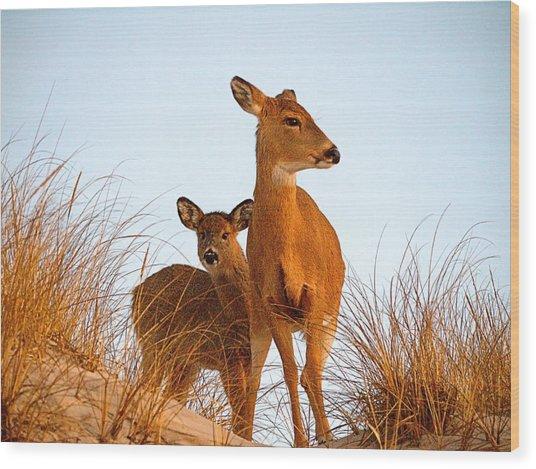 Ocean Deer Wood Print