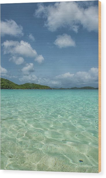 Ocean For Miles Wood Print
