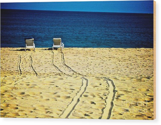 Ocean Front Row Wood Print by Matthew Keoki Miller