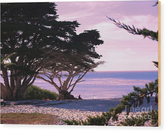 Ocean Views From Carmel Beach  Wood Print