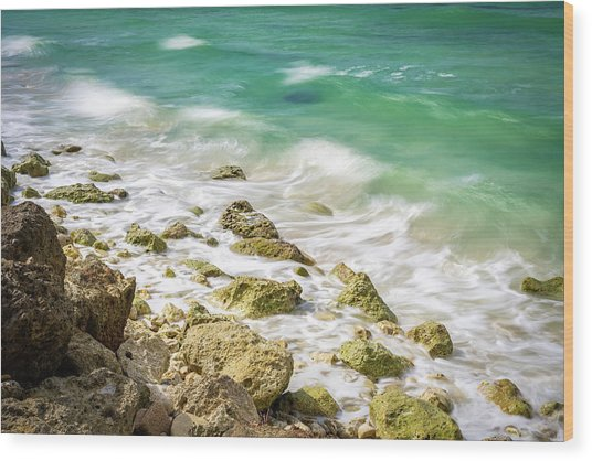 Oceanside In Trelawny, Jamaica Wood Print