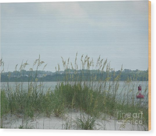 Oceanview Through Seaoats Wood Print by Barb Montanye Meseroll