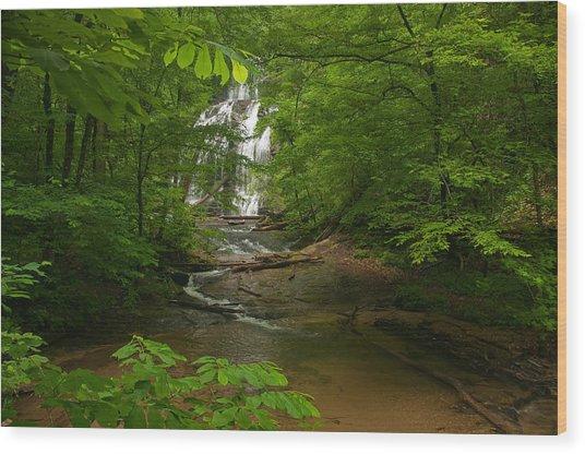 Oconee Station Waterfall Wood Print by David Waldrop