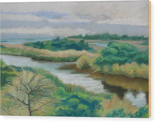 Ocracoke Afternoon Wood Print by Shirley Galbrecht