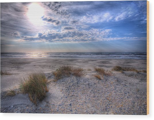 Ocracoke Winter Dunes II Wood Print