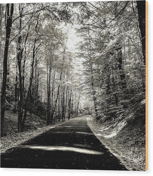 October Grayscale  Wood Print