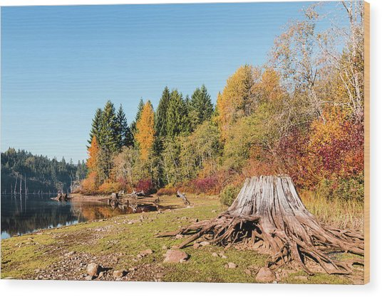 October On The Lake Shore Wood Print