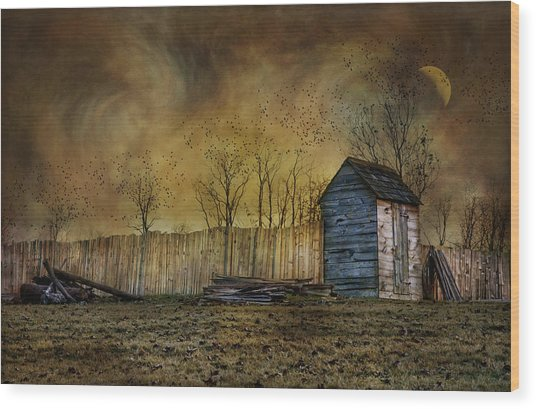 October Outhouse Wood Print