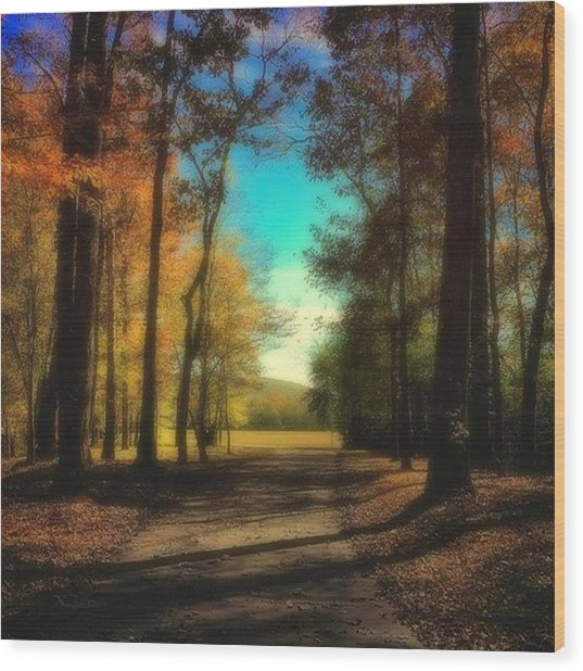 October Path Wood Print
