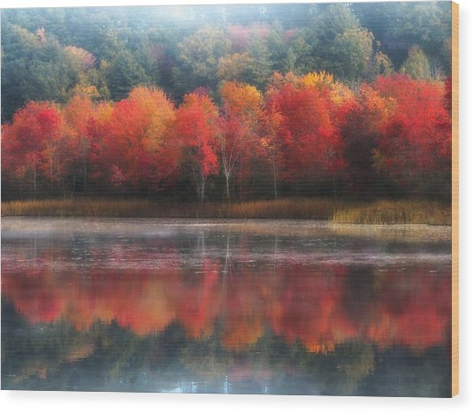 October Trees - Autumn  Wood Print