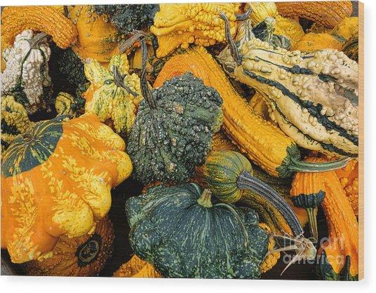 Odd Gourds One Wood Print