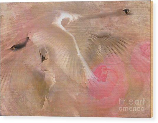 Ode To A Swan 2015 Wood Print