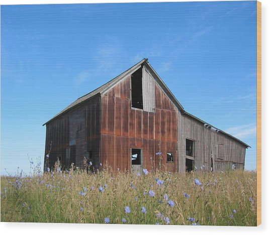 Odell Barn I Wood Print