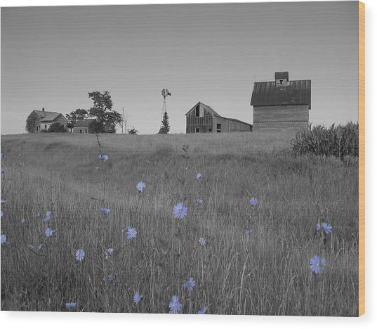 Odell Farm Iv Wood Print