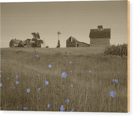 Odell Farm V Wood Print