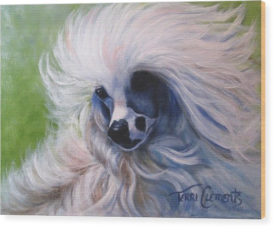 Odin In The Breeze Wood Print by Terri Clements