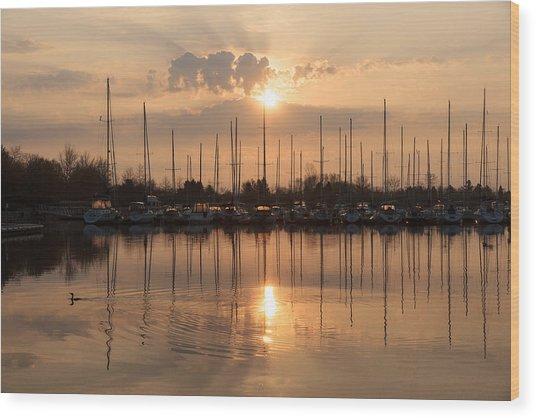 Of Yachts And Cormorants - A Golden Marina Morning Wood Print