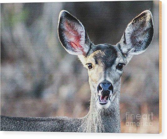 Oh, Deer Wood Print