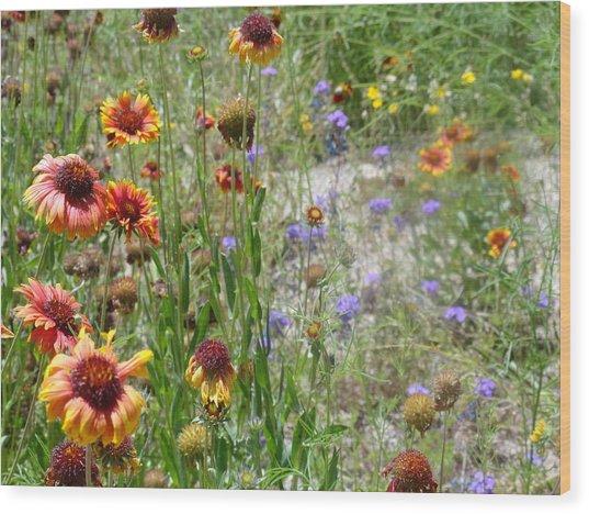 Oh Hi Orange Red Purple Flowers Wood Print