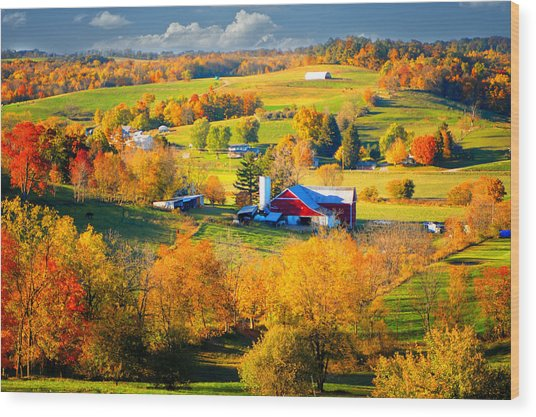 Ohio Amish Country Wood Print