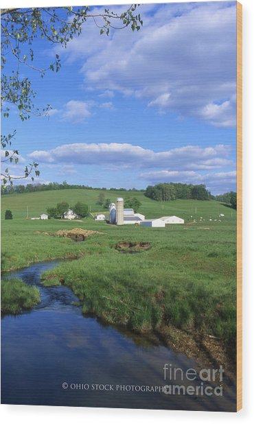 3d203 Ohio Farm Photo Wood Print