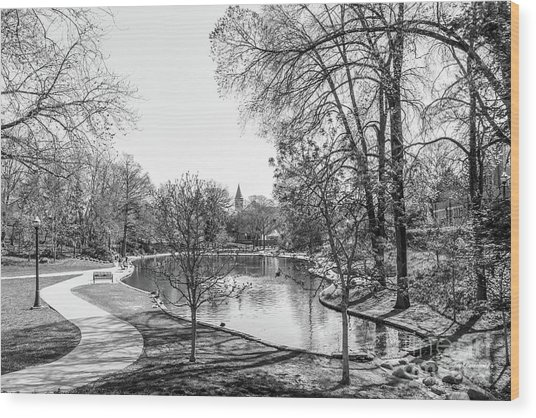 Ohio State University Mirror Lake Wood Print