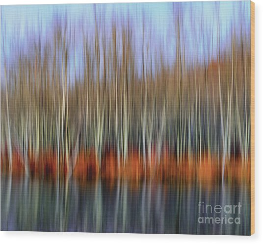 Oil Painting Reflection Wood Print