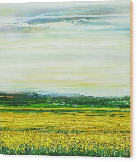 Oil Seed Rape Tyndale No3 Wood Print by Mike   Bell