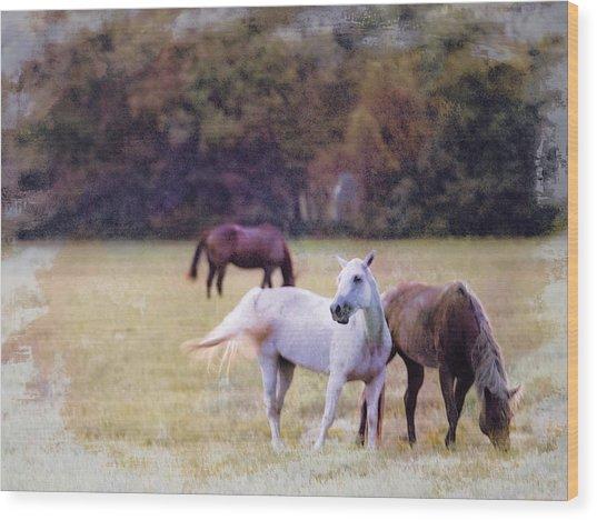 Ok Horse Ranch_1c Wood Print