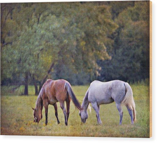 Ok Horse Ranch_2a Wood Print