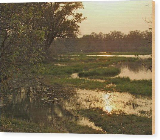 Okavango Delta Gold Wood Print
