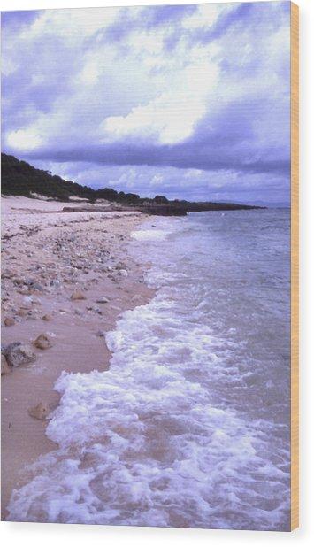 Okinawa Beach 17 Wood Print by Curtis J Neeley Jr