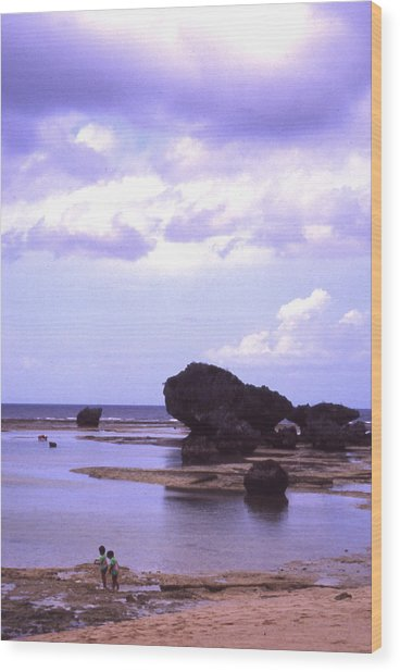 Okinawa Beach 20 Wood Print by Curtis J Neeley Jr