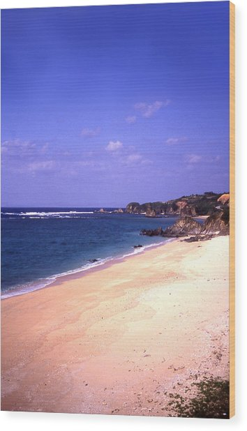 Okinawa Beach 22 Wood Print by Curtis J Neeley Jr
