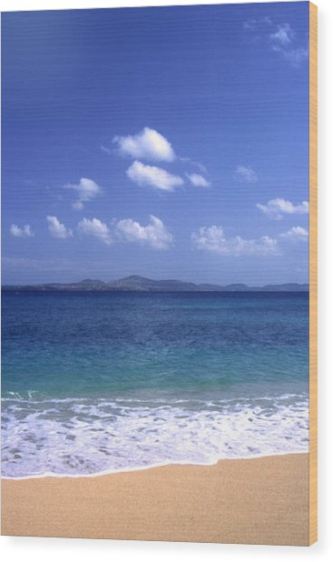 Okinawa Beach 8 Wood Print
