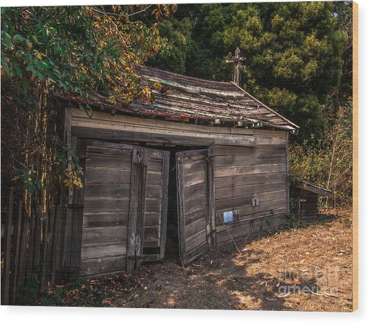 Old Abandoned Shed Sonoma County Wood Print
