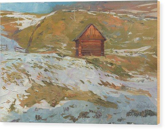 Old Barn In Bukovel Wood Print