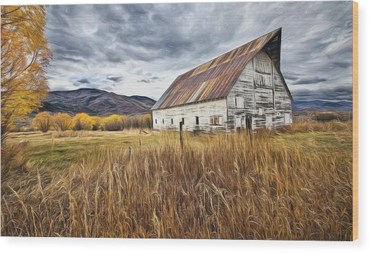 Old Barn In Steamboat,co Wood Print