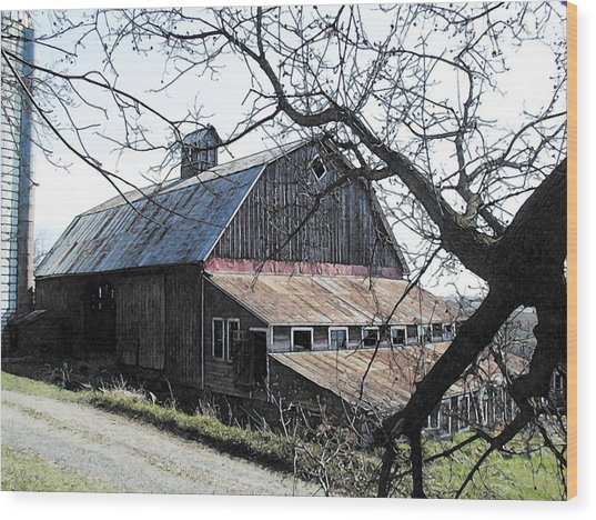 Old Barn With Tree Watercolor Wood Print by Laurie With