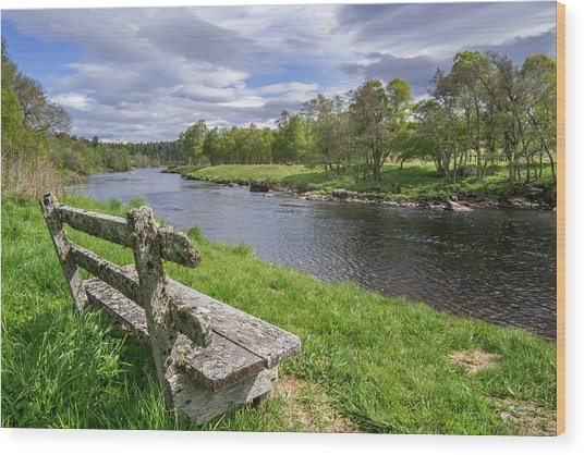 Old Bench Along Spey River, Scotland Wood Print