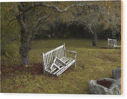 Old Benches Wood Print