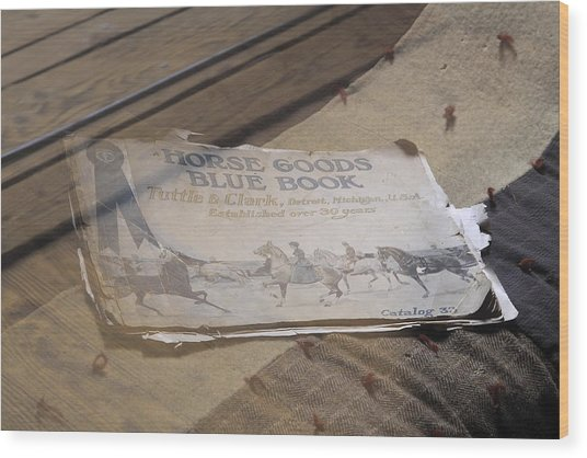Old Blue Book Wood Print by Viktor Savchenko
