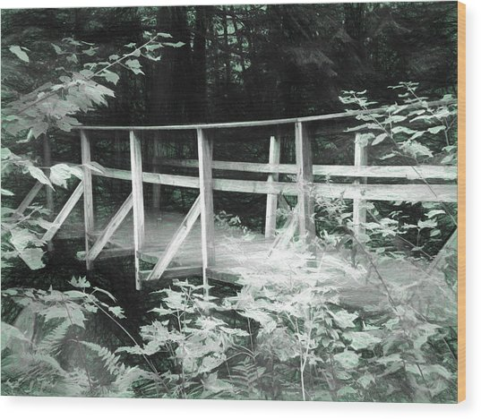 Old Bridge In The Woods Wood Print