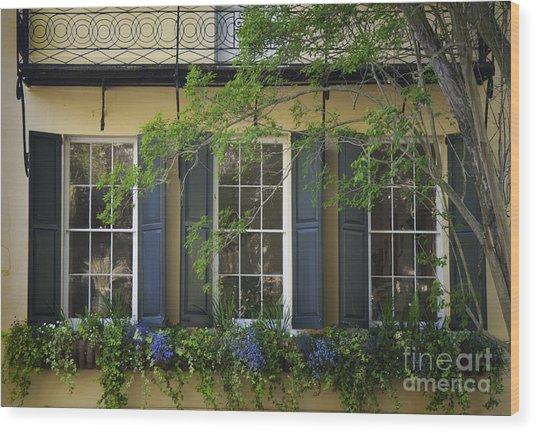 Old Charleston Window  Wood Print