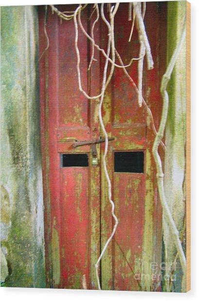 Old Chinese Village Door Eleven Wood Print by Kathy Daxon