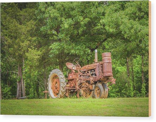 Old Faithful Wood Print by Barry Jones