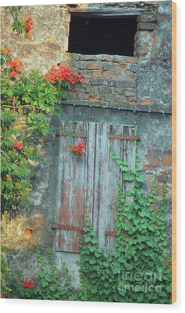Old Farm Door Wood Print
