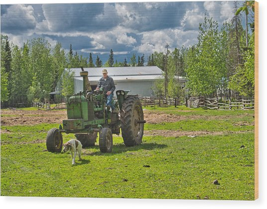 Old Farmer Old Tractor Old Dog Wood Print