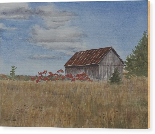 Old Farmer's Barn Wood Print by Debbie Homewood